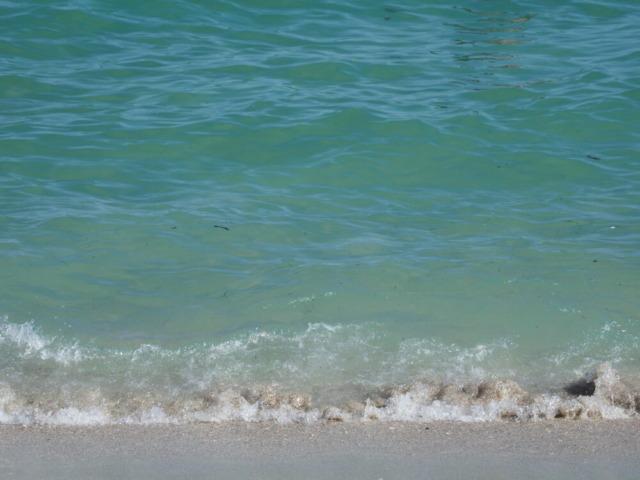 マイアミビーチ10