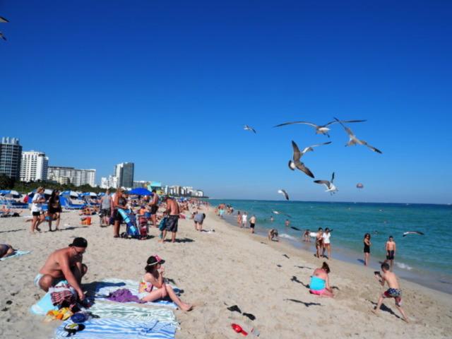 マイアミビーチ5