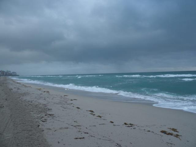 マイアミビーチ早朝1