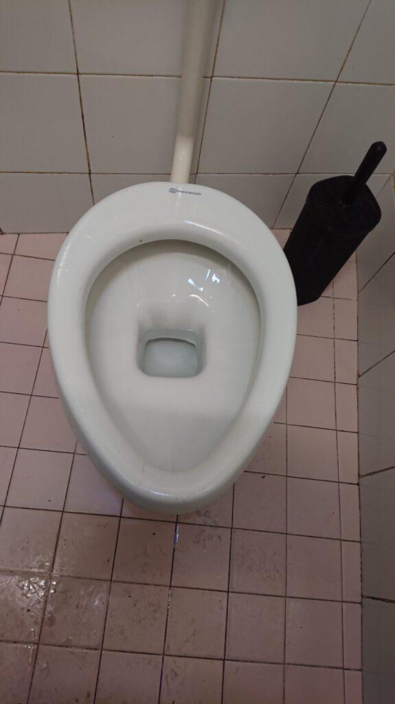 イタリアのトイレ便座なし