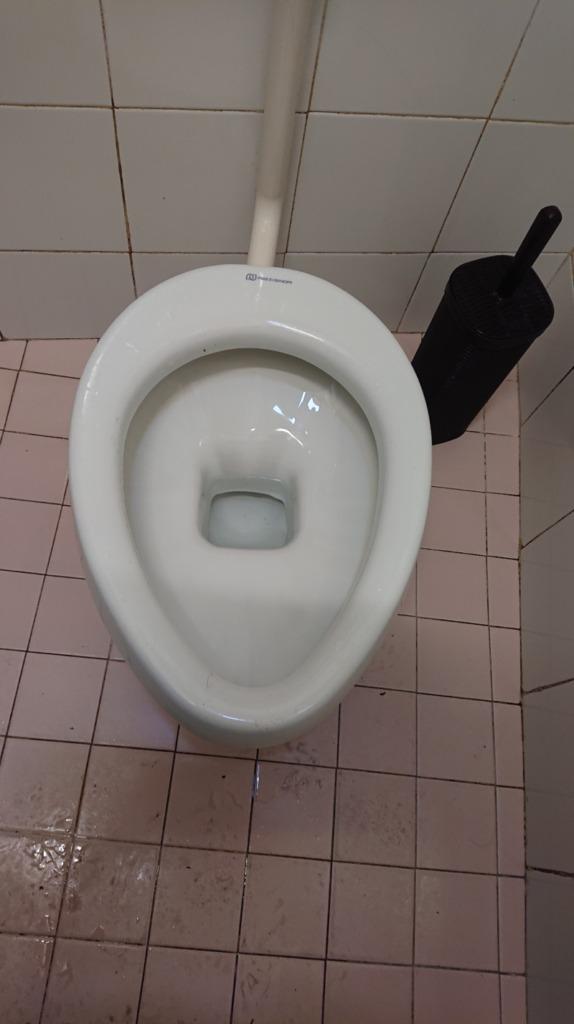トイレに便座がない